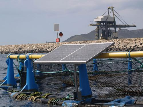 fotovoltaica marina-camaraespin01b.jpg
