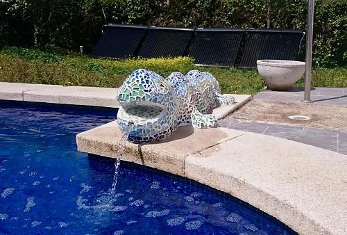 calentar el agua de piscina cubierta con bajo costo-dsc_1847.jpg